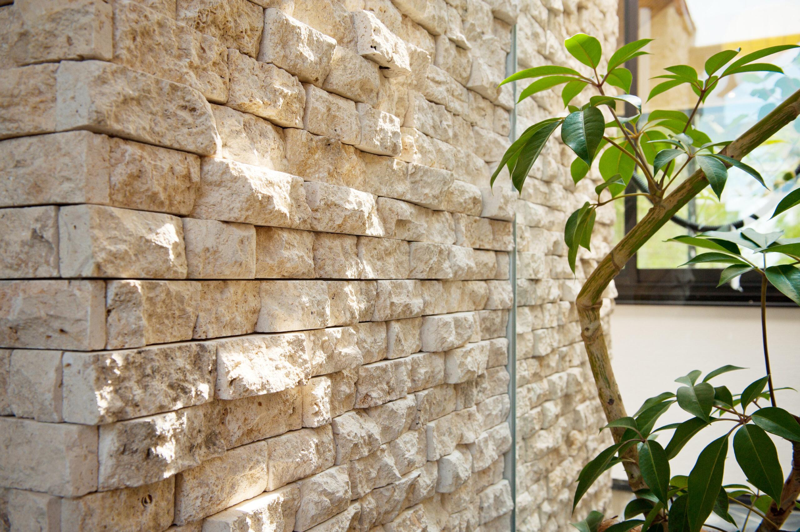 石のあるかっこいい暮らし コーラルストーンの施工事例